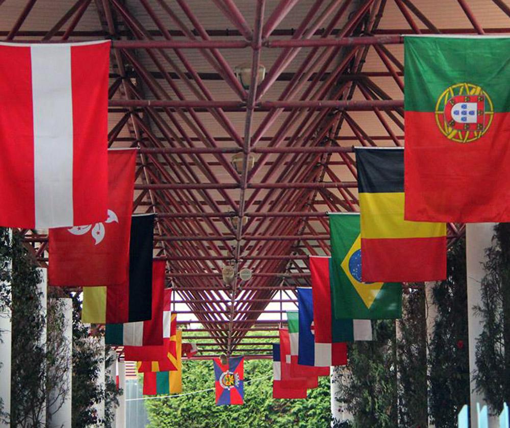 bandeiras impressas de países